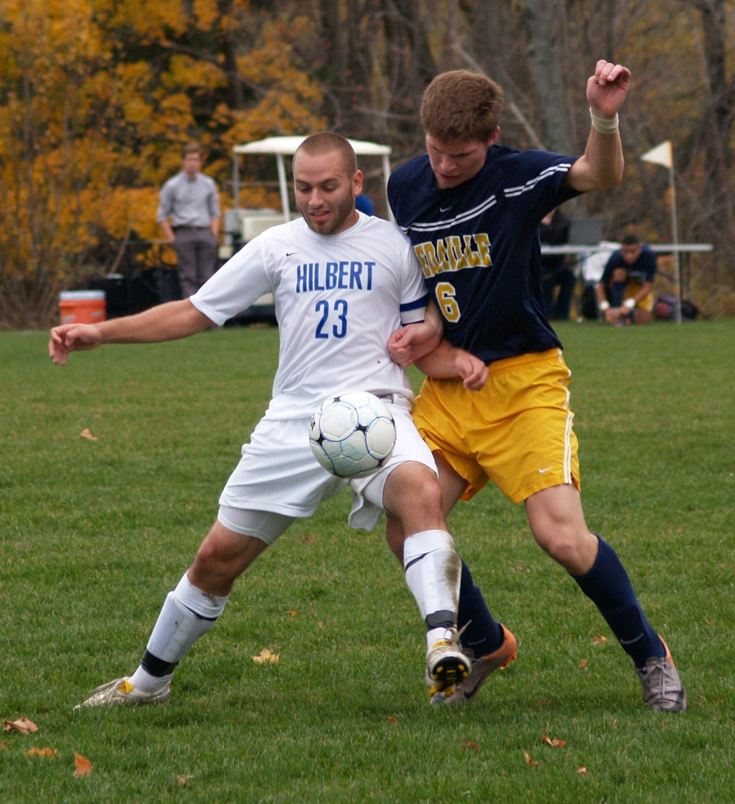 hilbert single men Steubenville – the barons tied a program single-game goal record as the franciscan men's soccer team rolled by hilbert, 8-2, in the amcc opener for both teams, saturday.