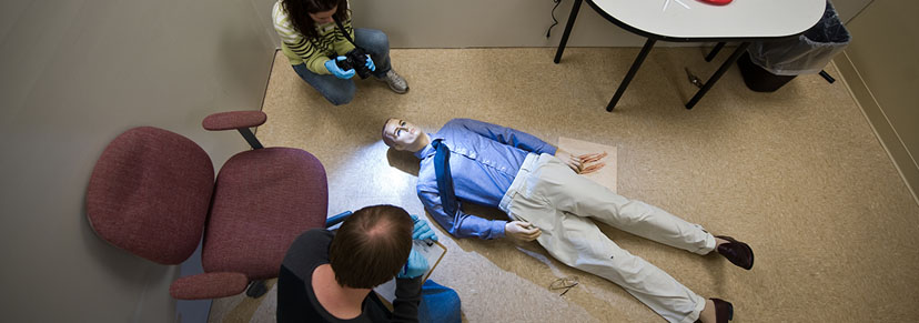 Bachelor S In Forensic Science Csi Hilbert College
